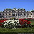2019 奧地利(Austria)~~維也納(Vienna)  (1)