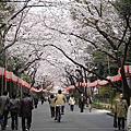 2006 春 東京 Day 5-1