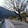 2007 冬 京阪神 Day 6
