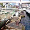 2007 冬 京阪神 Day 10
