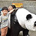 20190405台北動物園