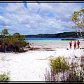 澳洲東岸世界遺產 佛雷沙島 FRASER ISLAND
