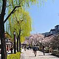京都-祇園白川日與夜