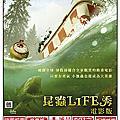 2014/07/11 昆蟲life秀