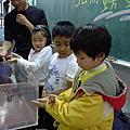 101年博物館進入校園常態性推廣教育-北關螃蟹博物館(20120327-深溝國小)