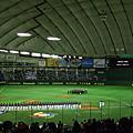 球場 Ballparks