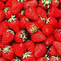 草莓戀上巧克力~幸福1日遊