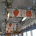 Japan,大阪關西五日遊