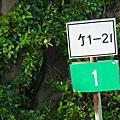 16竹1-2