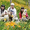台東太麻里金針山賞花趣‧Aug. 22, 2011