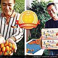 阿爸的開心果園--橙蜜香小番茄日記
