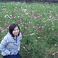20101204角板山