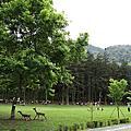20100314惠蓀林場