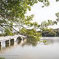 【新竹親子旅行】帶小小孩來逛逛青草湖