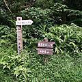 汐止大尖山-四分尾山-順遊茄苳古道瀑布 2006-10-14