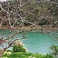 台北的世外桃源--坪林