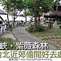20110410 三峽紫徽森林