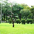 Lumphini Park (魯賓尼公園)
