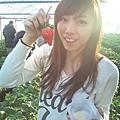 2011日本遊