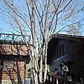 第124露營之司馬限360度景觀營區&司馬限山三等三角點