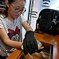 原宿刺蝟咖啡廳