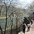 日本黑部立山五日遊