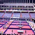 2009臺北聽奧某日隨手拍