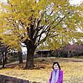 奈良 大佛池 二月堂 東塔跡