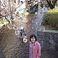 京都六角堂 蔦家咖啡 栖園