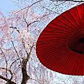 京都 桔梗屋 鶴屋吉信 平野神社 北野 富久屋
