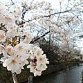 京都高瀨川 千本釋迦堂 爸爸廚房
