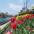 2018春盛岡 仙台