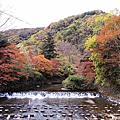 2017京都 八瀨小徑.伊野田咖啡