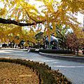 再訪廣島美術館、平和公園
