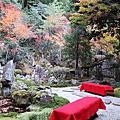 11月23日 三訪美術館 二訪三瀧寺 ‧ 印度餐廳.廣島機場