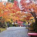 2019京都秋遊 寶泉院.三千院