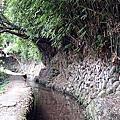 20150802坪頂古圳步道