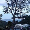 20160529龍船岩+開眼山+白石湖吊橋+同心池百合
