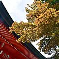 20170708日本比叡山延曆寺東塔