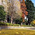 20191215【東京下町風情】07上野恩賜公園博物館區