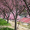 2011.2.22武陵富野渡假村