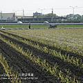 徐妹三歲九個月~十一個月全記錄(2011.3.1~5.31)