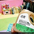 【清檜Hinoki Life】清檜天然防蟑螂螞蟻噴劑+清檜抗菌驅蟲萬用清潔劑+清檜天然去污亮光粉+清檜水垢鏽斑去污清潔劑+清檜天然酵素去漬液+清檜檜木地板清潔劑