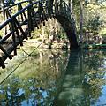 20091110溪頭散步