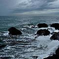 觀浪--西子灣