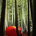 141117 14年日本京阪之旅 Day3