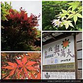 2011/05/01閒晃的一天相簿封面