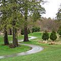 2009高爾夫球場
