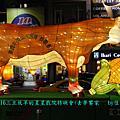 20070316三立放羊的星星戲院特映會