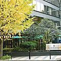 #日本旅遊#東京觀光#龍名館酒店#TEA RESTAURANT